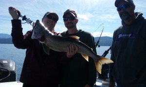 A Lake Trout with a history, from Flathead Lake, Montana