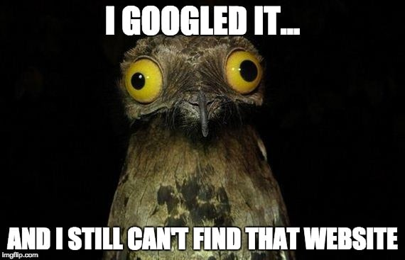 Image of a bird with I can't find that website meme
