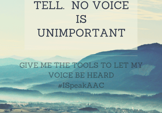 No Voice is Unimportant Poster