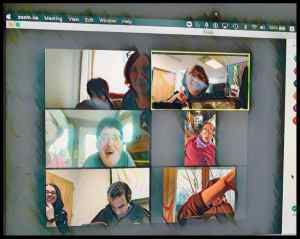 Computer screen showing Zoom meeting participants