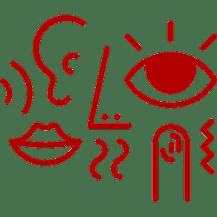 all senses - mouth, nose, ear, eye and finger