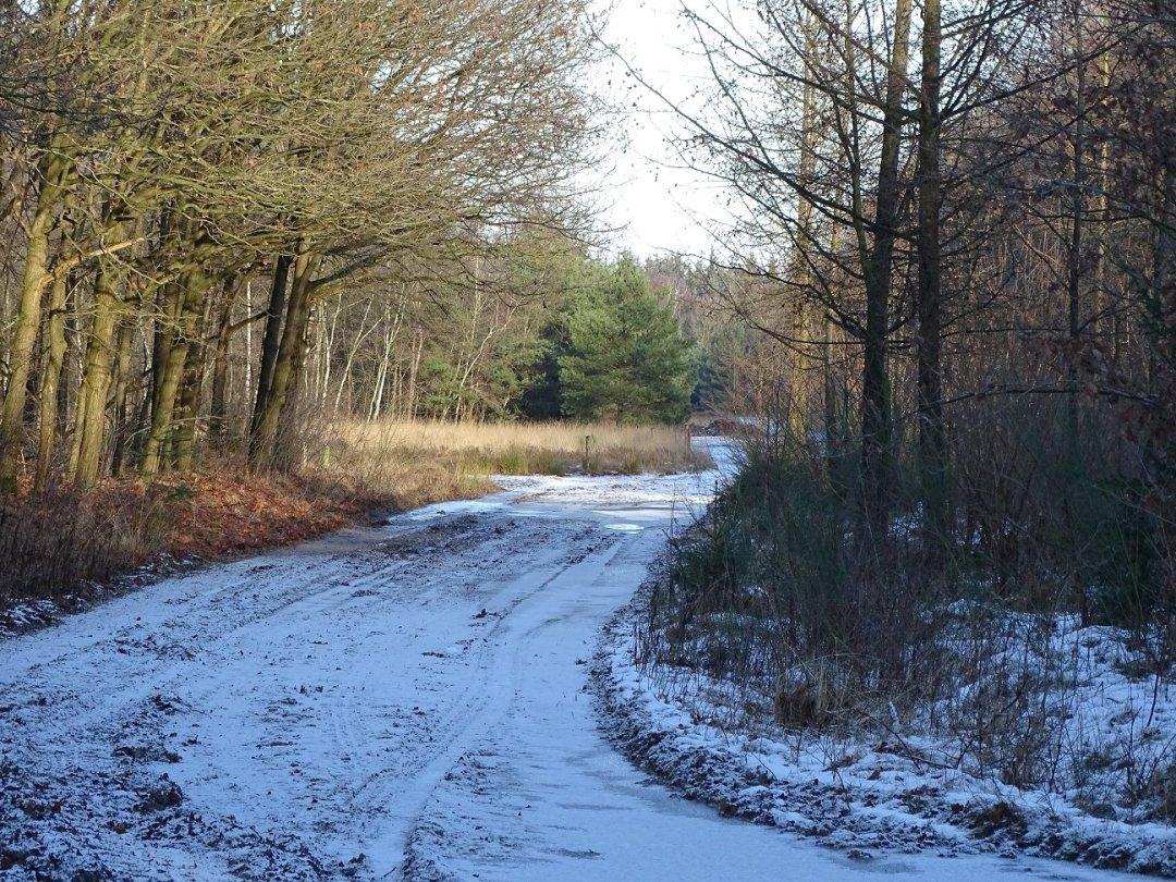Zin en sneeuw