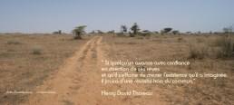 sur le chemin, à afrika mandela ranch