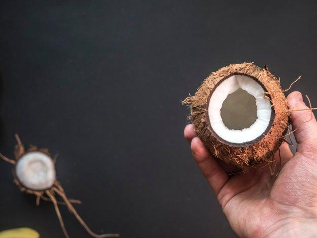 black-background-coconut-disjunct-1171060