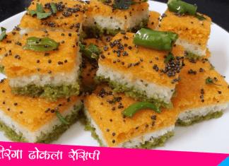Tiranga Dhokla Recipe
