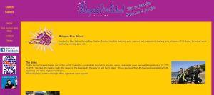 Octopus Dive School Website - Before