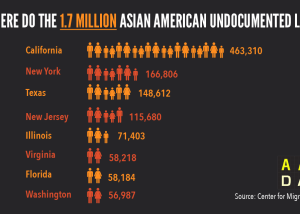 Infographic: Where do AA Undocumented Live  (2015)