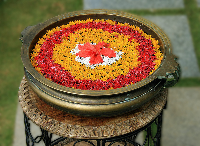 Bowl-full-with-water-and-flower.jpg