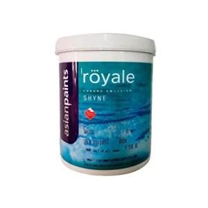 plastic paint price