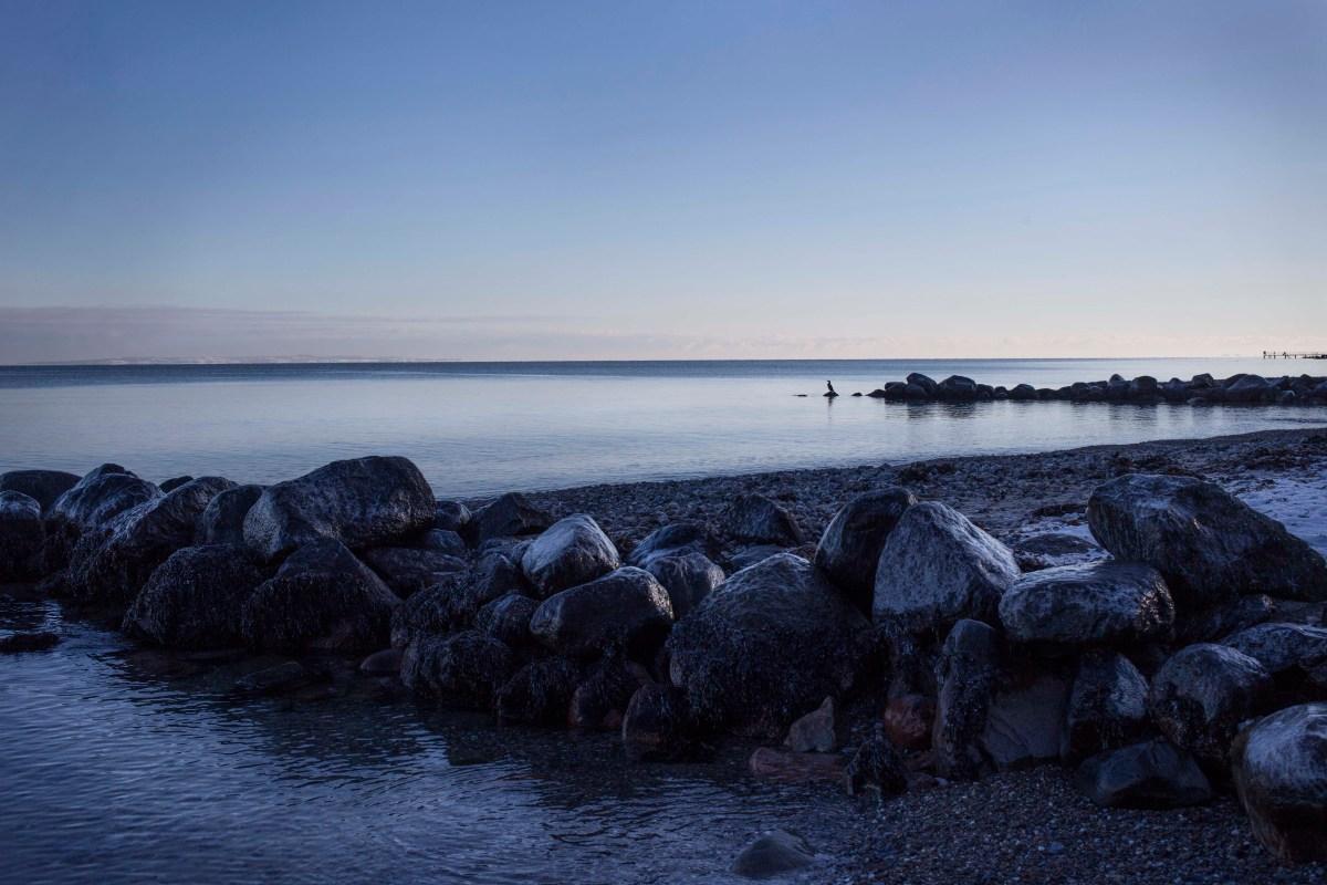 vinterbadning_aarhus_panorama15