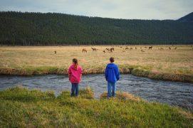 Kyle And Ella Watching The Elk In Moraine Park