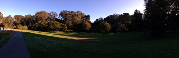 Panorama Grassy Knowl [Golden Gate Park]
