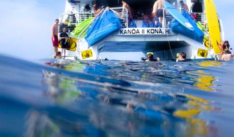 Kona Snorkeling