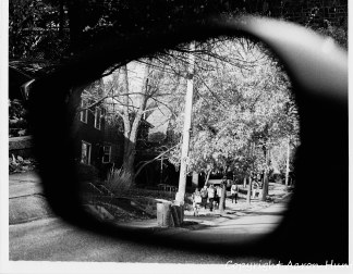 Looking into the past