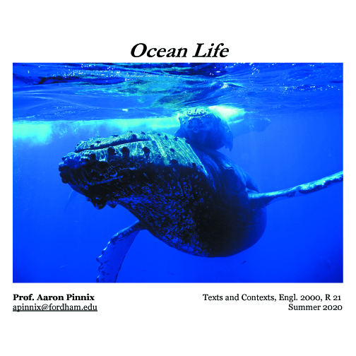 Ocean Life, Online Summer Course