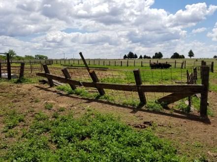Fence falling