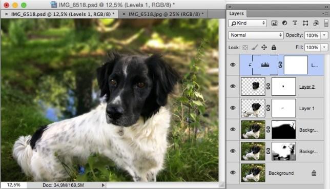 Photoshop Lens Blur voor Apple's Portretmodus van IOS 10.1 op de iPhone 7 Plus