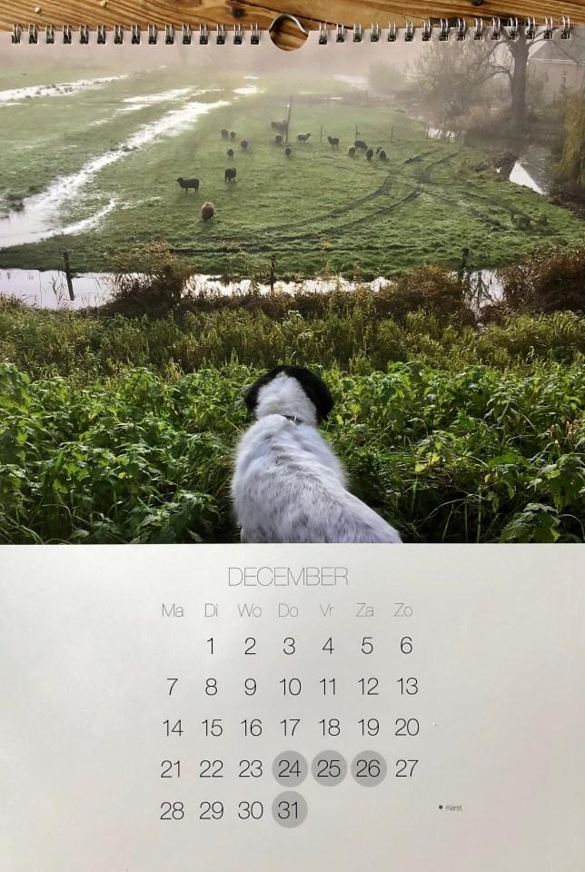 kalender met je eigen foto's
