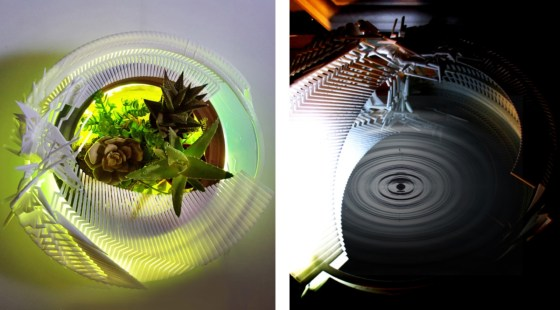 HydraLight Terrarium
