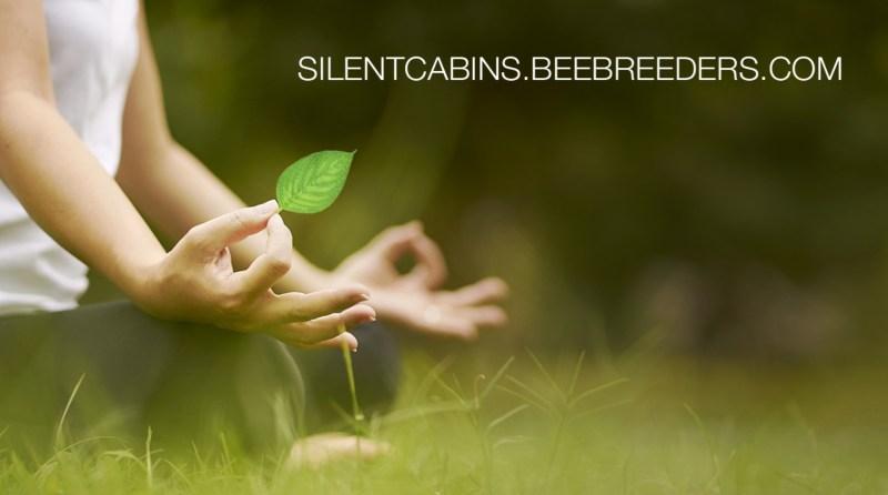 Silent Meditation Forest Cabins
