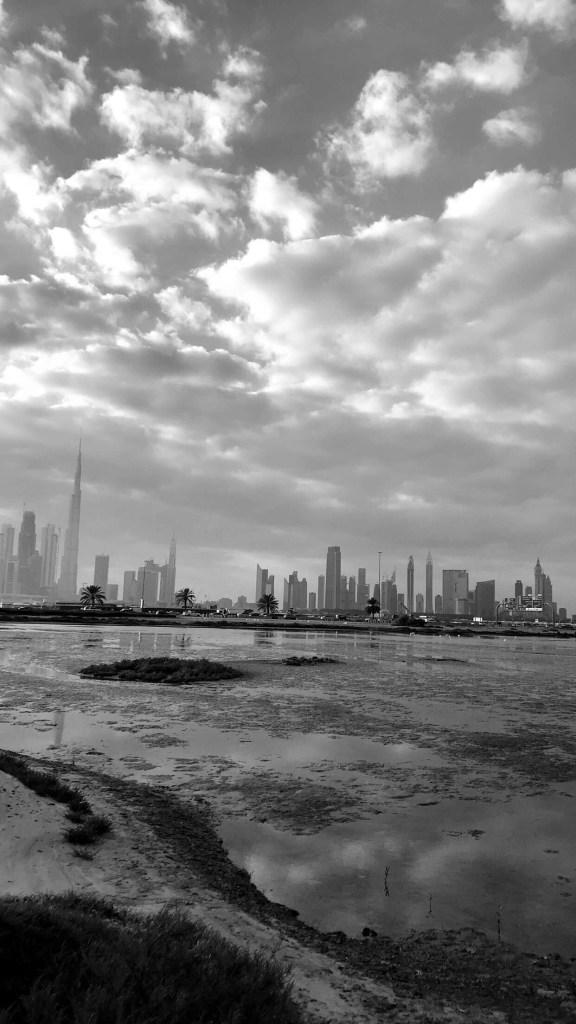 صور من دبي