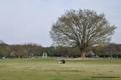shonai park nagoya japao-13