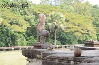 angkor wat camboja8