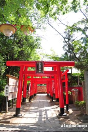 castelo inuyama japao-9