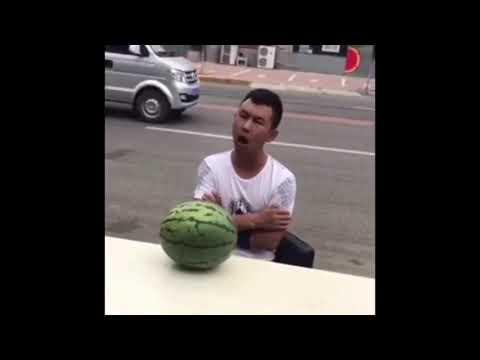 Lustige kurz Videos Zum Lachen