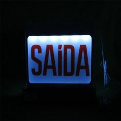 Luminária de Emergência Para Balizamento de Rota de Fuga e Evacuação com Placa Acrílica e LED's de Iluminação código NEWSLIM