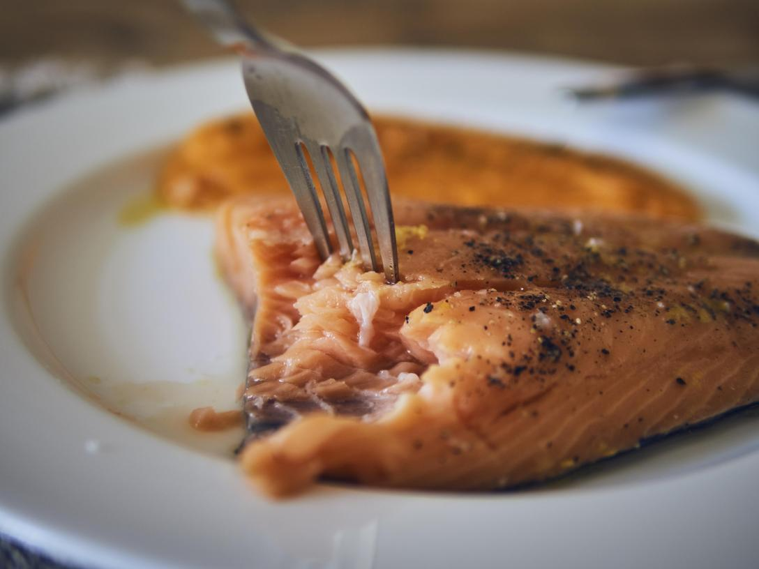 salmon sous vide 43º
