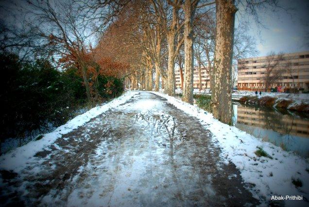Toulouse-snow fall (18)