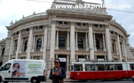 Trams in Vienna (5)