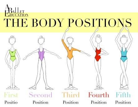 body position basic 1