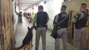 Revista da BM no Presídio Central apreende drogas e celulares   Foto: Brigada Militar / Divulgação / CP