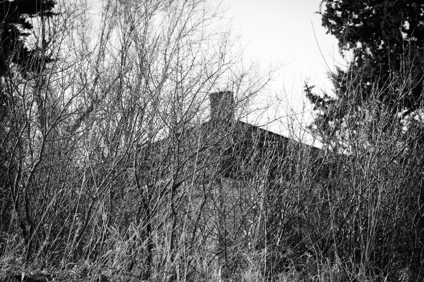 Montezuma castle8 Eklund.jpg