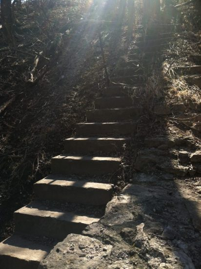 Abandoned Mill Stairs