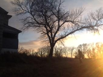 Beetison Mansion Sunset4