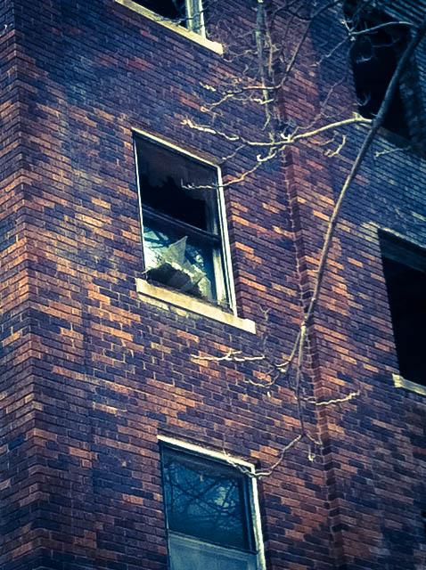 JFK Window 2