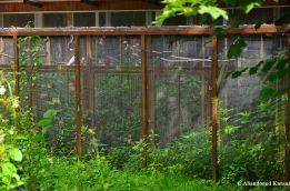 Abandoned Aviary?