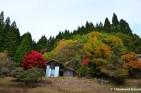 Haikyo Town