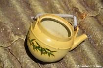 Deserted Japanese Tea Pot