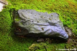 Moss Cushion