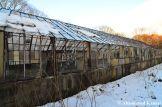 Abandoned Hokkaido Greenhouse