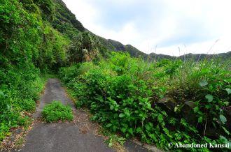 Abandoned Road On Hachijojima
