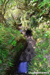 Down Into The Caldera