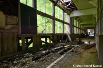 Rotting Wooden School