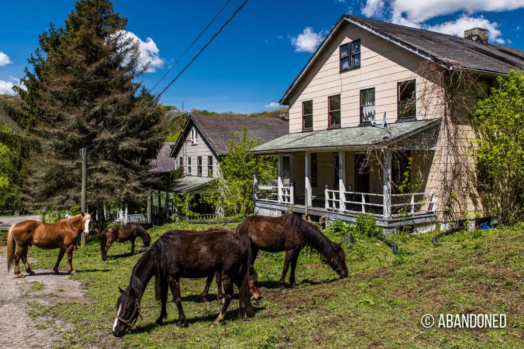 Shadyside Village, Pennsylvania