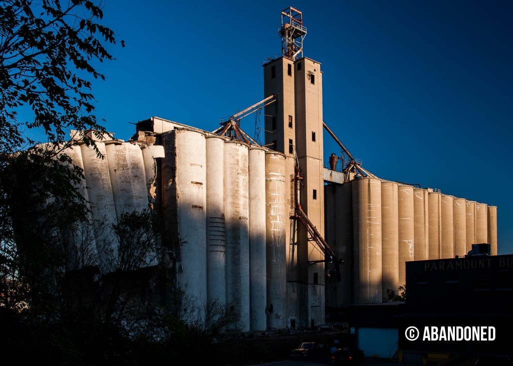 Consolidated Grain