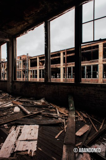 Packard Automotive Plant
